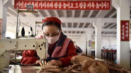 Kinh tế Triều Tiên sụt giảm lớn nhất 23 năm vì các lệnh trừng phạt và dịch COVID-19