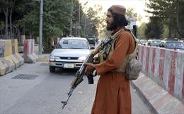 Sau 20 năm chinh chiến, chiến binh Taliban tìm cách thích nghi với… hoà bình