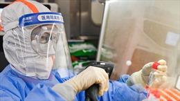Trung Quốc xét nghiệm hàng chục ngàn mẫu máu ở Vũ Hán để điều tra nguồn gốc COVID-19