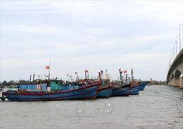 Tạo động lực cho ngư dân khai thác xa bờ