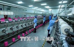 Xây dựng chuỗi sản phẩm tạo thế vững chãi cho xuất khẩu