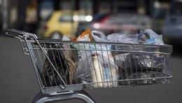 New Zealand 'nói không' với túi nilon dùng một lần