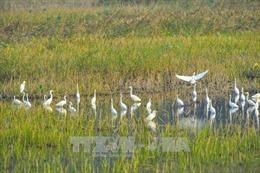Du lịch sinh thái bền vững - Bài cuối: Hoàn thiện cơ chế chính sách cho các mô hình
