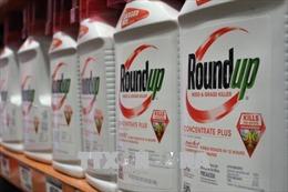 Hy vọng cho nạn nhân chất độc da cam của Việt Nam sau phán quyết vụ Monsanto