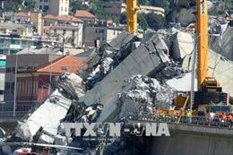 Vụ sập cầu cạn báo động tình trạng thiếu đầu tư vào cơ sở hạ tầng tại Italy