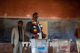 Tổng thống Zimbabwe khẳng định cuộc bầu cử diễn ra trên tinh thần minh bạch và cởi mở