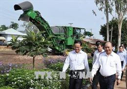Thủ tướng thăm một số mô hình nông nghiệp công nghệ cao tại Tây Ninh