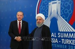 Iran - Thổ Nhĩ Kỳ tăng cường hợp tác, chống lại các lệnh trừng phạt của Mỹ