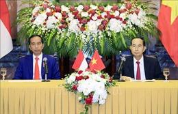Chủ tịch nước Trần Đại Quang và Tổng thống Indonesia Joko Widodo gặp gỡ báo chí