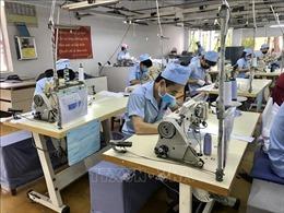 Số lao động có việc làm sẽ tiếp tục tăng trong quý 3/2018