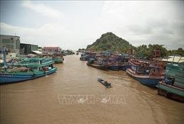Quản lý tàu cá hoạt động khai thác hải sản