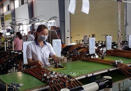 Bà Rịa - Vũng Tàu ưu tiên thu hút đầu tư FDI có chọn lọc