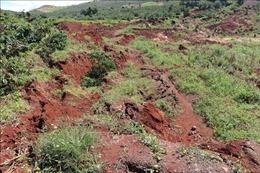 Lâm Đồng đánh sập các hầm vàng trái phép ở gần khu vực sụt lún hàng nghìn m2