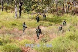 3 năm, gần 10.500 ha rừng tự nhiên bị phá, lấn chiếm tại Đắk Lắk