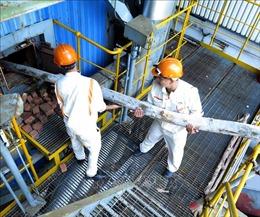 Tái khởi động Nhà máy Bio Ethanol Dung Quất sau hơn 3 năm