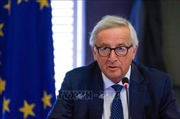 Chủ tịch EC kỳ vọng Anh, EU đạt được thỏa thuận Brexit vào tháng tới