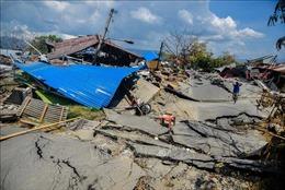 'Khan' xăng dầu tại vùng động đất, sóng thần Indonesia
