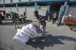 Canada tăng cường viện trợ cho cơ quan LHQ cứu trợ người Palestine