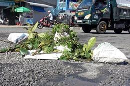 Đường Hồ Chí Minh đoạn Năm Căn - Đất Mũi bị xuống cấp nghiêm trọng