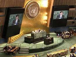 Đại diện Việt Nam tại LHQ: Chính sách cấm vận của Mỹ chống Cuba là bước thụt lùi