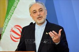 Iran tuyên bố đạt được nhiều thành tựu, bất chấp các lệnh trừng phạt của Mỹ