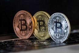 Bitcoin tiếp tục 'rơi tự do' xuống ngưỡng 3.500 USD