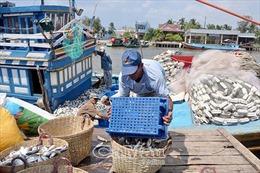 Luật Thủy sản 2017 sắp có hiệu lực - Bài 2: Nâng cao hiệu quả nghề khai thác biển