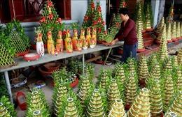 Làng trồng cây phát lộc Minh Tân hối hả vào vụ Tết