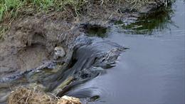 Nước thải của Nhà máy đường Tuy Hòa có 7/12 thông số vượt quy chuẩn