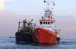 Sóng lớn đánh chìm tàu của ngư dân Bình Định trên biển