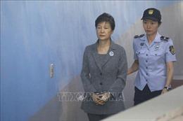 Giữ nguyên bản án vì tội nhận tiền bất hợp pháp đối với hai trợ lý cựu Tổng thống Park Geun-hye