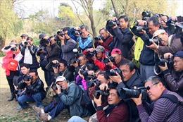 Nhiếp ảnh - thú vui mới của người lớn tuổi ở Trung Quốc