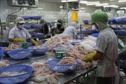 Cơ hội bứt phá cho xuất khẩu cá tra - Bài cuối: Làm gì để chinh phục thị trường khó tính?