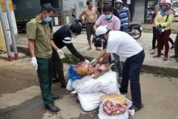 Thu giữ hàng trăm kg thịt lợn đã bị nấm mốc, không rõ nguồn gốc
