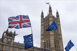 Brexit 'không thỏa thuận' – mối quan ngại lớn của các nước EU