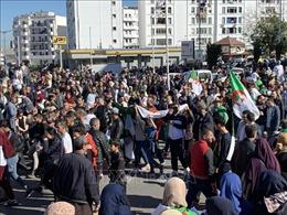 Hàng chục nghìn người Algeria tiếp tục biểu tình phản đối chính phủ