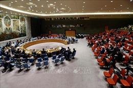 Hội đồng Bảo an Liên hợp quốc 'dội' chỉ trích vào Mỹ về Cao nguyên Golan