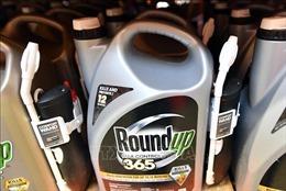 Monsanto phải bồi thường 81 triệu USD cho một người làm vườn bị ung thư