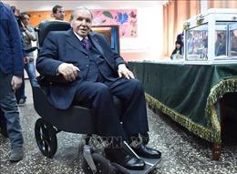 Tổng thống Algeria đệ đơn từ chức