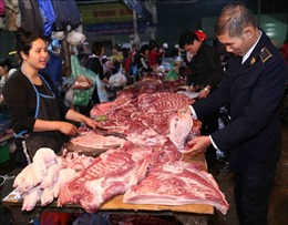Hướng dẫn biện pháp khẩn cấp về quản lý giết mổ, tiêu thụ sản phẩm lợn