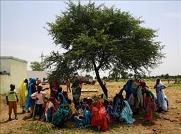 Đụng độ nghiêm trọng tại trại tị nạn ở Sudan, 14 người thiệt mạng