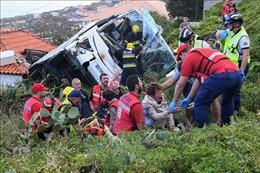 Ngoại trưởng Đức tới hiện trường vụ tai nạn thảm khốc tại Bồ Đào Nha