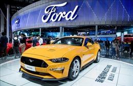Mỹ điều tra hình sự 'đại gia' Ford