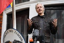 Các chuyên gia LHQ chỉ trích mức án 'bất hợp lý' đối với nhà sáng lập WikiLeaks