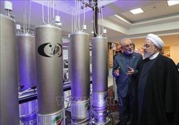 Đáp trả Mỹ, Iran có thể tái khởi động chương trình hạt nhân