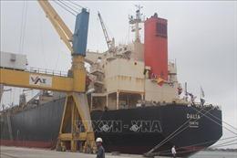 Thanh Hóa khai trương tuyến dịch vụ vận tải container quốc tế