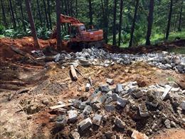 Đà Lạt xử lý 'nóng' nhiều công trình xây dựng hủy hoại rừng thông