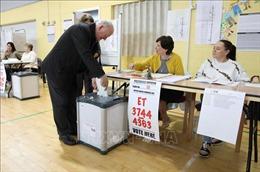 Bầu cử EP 2019 : Đảng Xanh có được kết quả ngoài mong đợi tại Ireland