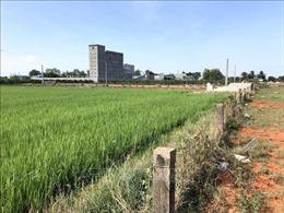 Xem xét kỷ luật một số cán bộ liên quan sai phạm đất đai tại Phan Thiết