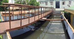 Bất cập xử lý rác thải tại Bệnh viện đa khoa huyện Yên Thành, Nghệ An